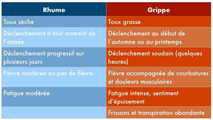Les principales différences de symptômes entre le rhume et la grippe. © C.D, Futura
