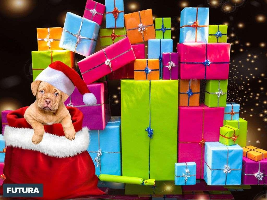 Futura vous souhaite à toutes et tous un Joyeux Noël