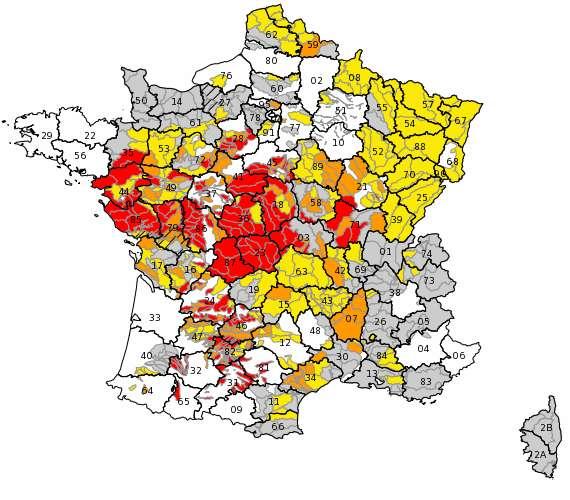 Quatre niveaux d'alerte : vigilance en gris, alerte en jaune, alerte renforcée en orange et crise en rouge. Les cartes sont quotidiennement mises à jour sur le site Propluvia. Ici, la carte du 25 juillet 2019. © Propluvia