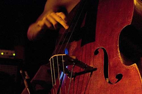 La musique adoucit les rhumes. Une découverte qui vaut bien un Ig Nobel ! © Christophe Alary, Flikr, Creative Commons