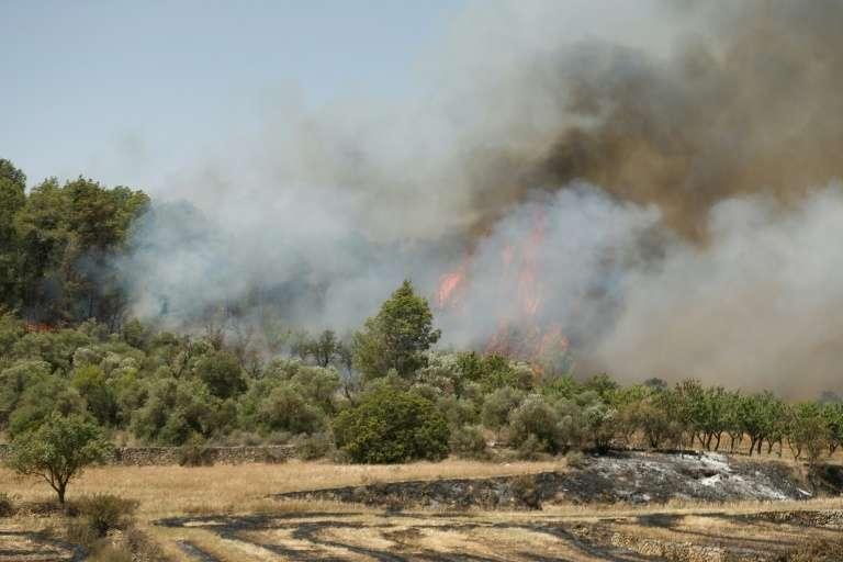 Un incendie dévastateur sévit près de Flix, en Catalogne, dans le nord-est de l'Espagne, le 27 juin 2019. © Pau Barrena - AFP