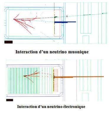 Cliquez pour comprendre le phénomène d'oscillation des neutrinos. © François Vannucci