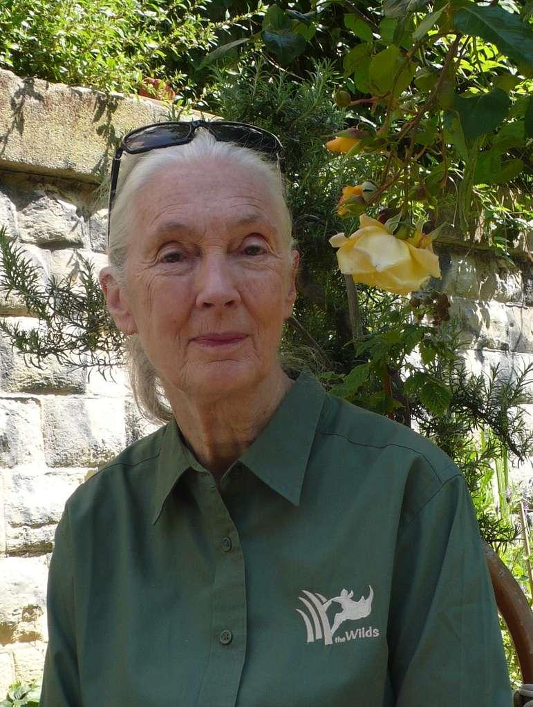 Jane Goodall, le 18 mai 2014, de passage à Paris, dans le jardin du Ruisseau, sur le tracé de l'ancienne Petite Ceinture. Au moment de son 80e anniversaire, elle était venue rendre visite à l'antenne française de son institut. © Jean-Luc Goudet, Futura-Sciences