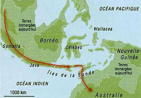 Australie - Migration 60000 ans