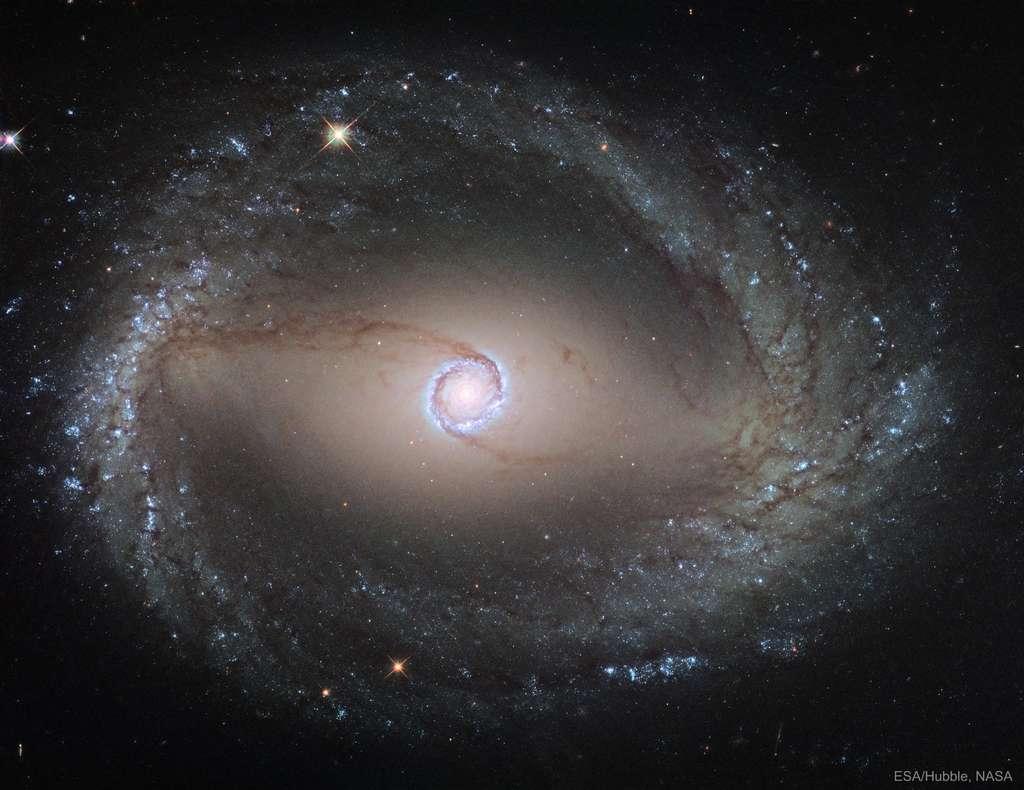 NGC 1512 est une galaxie spirale barrée située dans la constellation de l'Horloge à environ 41 millions d'années-lumière de la Voie lactée. Elle est ici observée par Hubble. © Nasa, Esa