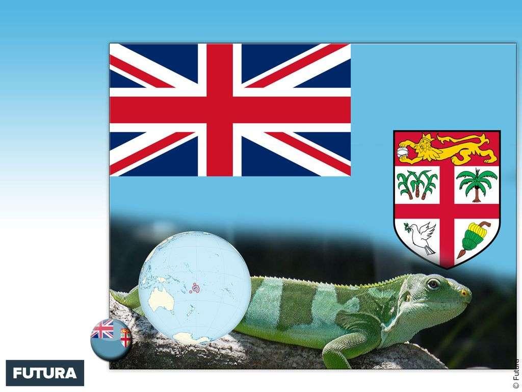 Drapeau : Fidji