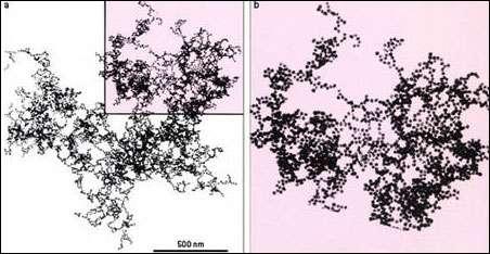 Fig. 2 (a) : image au microscope électronique d'un amas colloïdal d'or, composé de particules individuelles d'une dizaine de nanomètres. Sa structure est semblable à elle-même à différents grossissements, comme le suggère l'image grossie (b) d'une partie de l'agrégat. Il s'agit d'une caractéristique de son côté fractal non compact. © DR