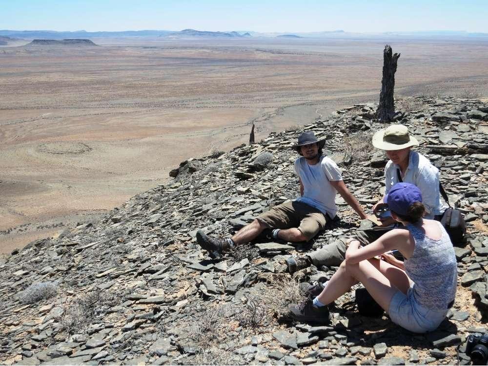 Une vue du site en Namibie correspondant à un ancien récif de l'Édiacarien supérieur. Il y a 548 millions d'années ce désert était un fond marin. © Rachel Wood