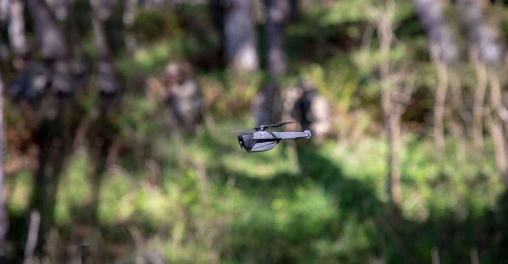 Le Black Hornet se distingue par sa taille miniature ; il tient dans une main ! © Prox Dynamics