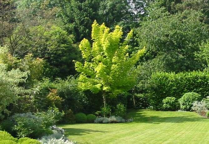 Pour obtenir un beau jardin entretenu, mieux vaut bien choisir son équipement d'arrosage automatique. © DR