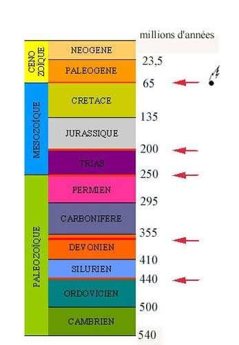 Les principales divisions des temps géologiques depuis le début du Paléozoïque, époque à partir de laquelle les fossiles deviennent abondants. Les flèches rouges marquent les grandes extinctions en masse. Les dinosaures ont vécu depuis le Trias jusqu'à la fin du Crétacé, qui est marquée par l'impact d'une énorme météorite. La catastrophe provoquée par cet impact est responsable de la disparition des dinosaures. © DR