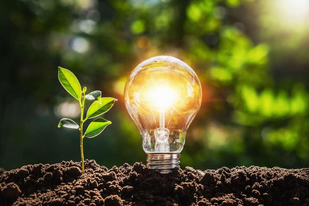 Les énergies vertes vont d'ici les prochaines années continuer de se développer afin de permettre une transition énergétique nécessaire. © lovelyday12, Adobe Stock
