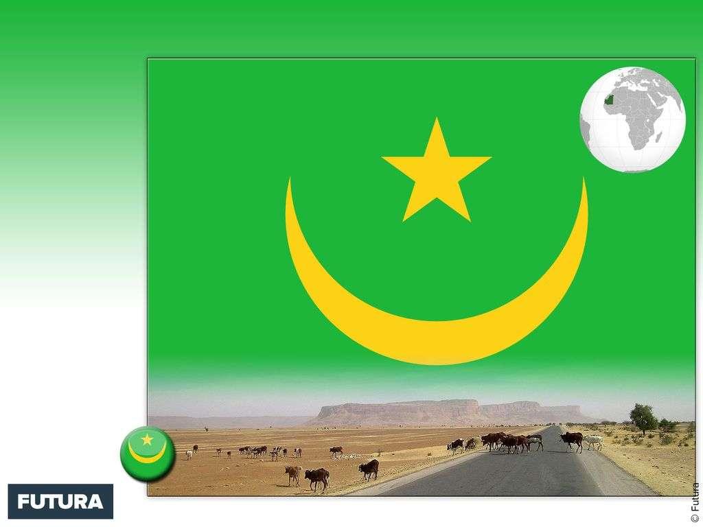 Drapeau : Mauritanie