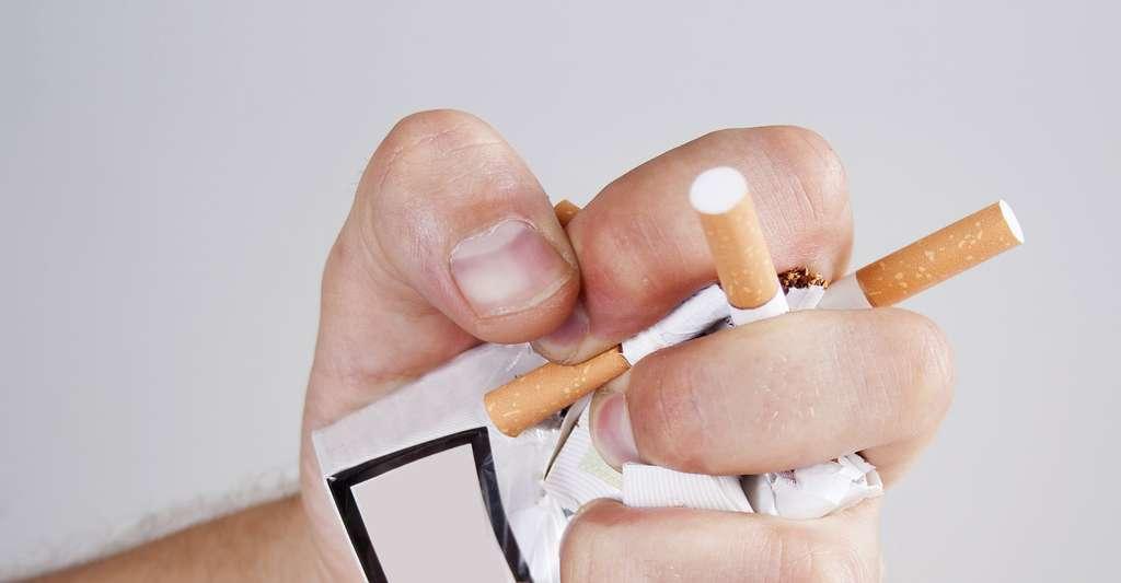 Arrêt du tabac. © Seanika, Shutterstock