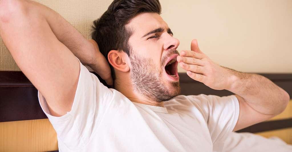 Le bâillement est un cycle respiratoire paroxystique. Mais à quoi sert-il ? © VGstockstudio, Shutterstock