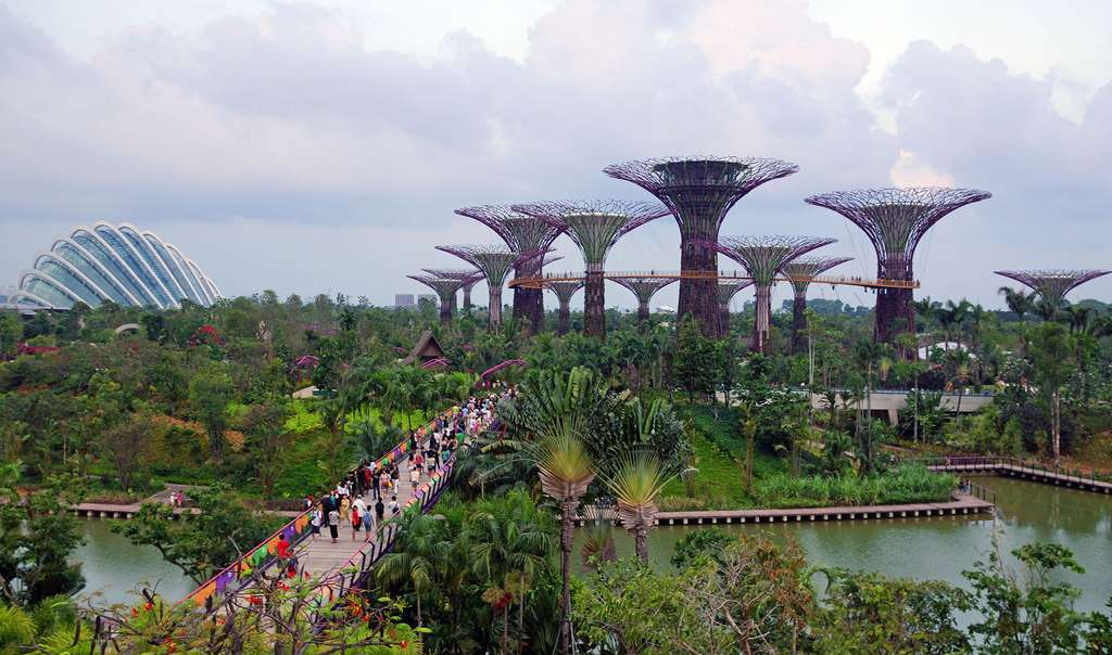 Le pont de la libellule et les 18 arbres de lumière