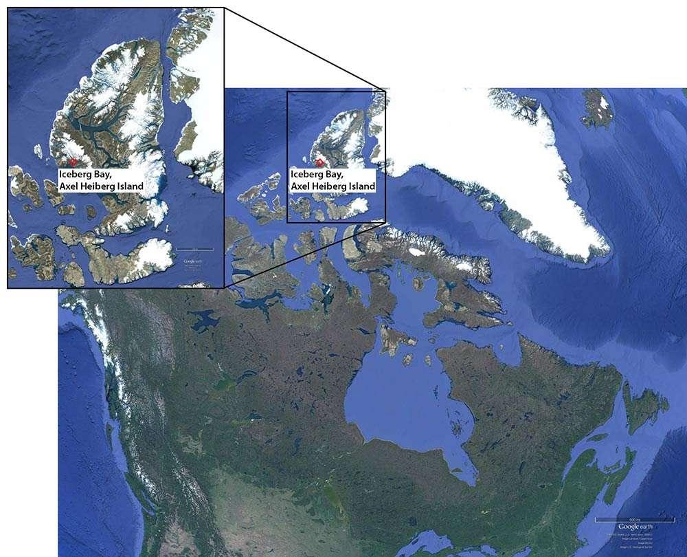 Les fossiles ont été découverts à l'extrême nord-est du Canada, non loin de l'océan Arctique. © Google Earth, Richard Bono et Rory Cottrell