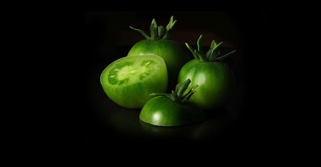 Des tomates de toutes les couleurs. © PDPhotos, CCO