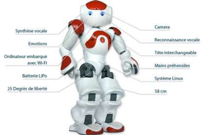 Le projet Nao vise à mettre à la disposition du grand public, pour un prix abordable, un robot humanoïde. © Wikipedia Aldebaran Robotics
