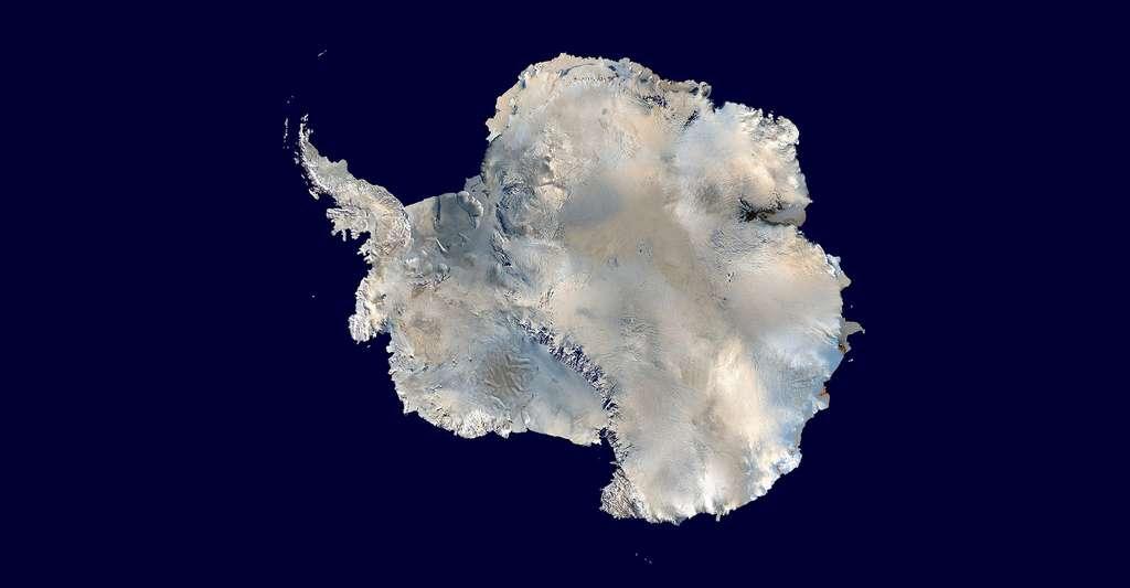 Comment dater les glaces ? Ici, l'Antarctique. Les images de la banquise, prises par Modis, ont été combinées avec celles du radiomètre avancé à très haute résolution de la National Oceanic and Atmospheric Administration pour former celle-ci. © Dave Pape, DP