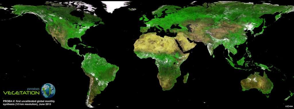 Première carte globale du couvert végétal réalisée par le satellite Proba-V en juin 2013. Cette mosaïque combine une multitude de photos acquises lors des premières révolutions du satellite autour de la Terre. © Esa
