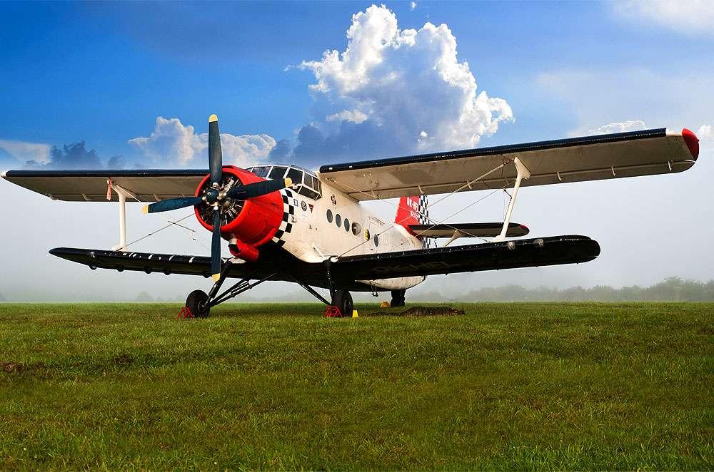 Antonov An-2, un avion de légende. © Julian Herzog, Wikimedia commons, CC by 4.0
