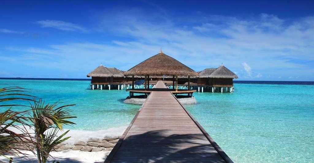 Plage des Maldives. © Romaneau, DP