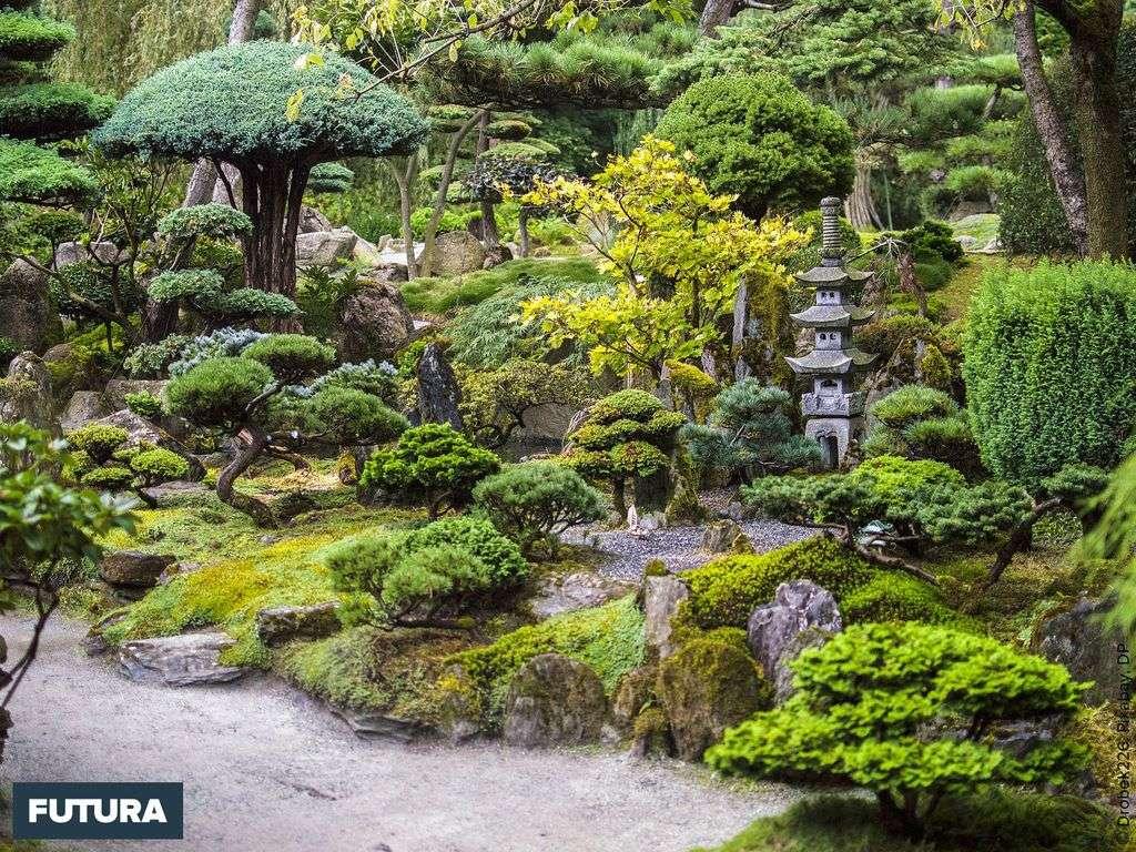 Au Japon, l'aménagement de jardins est un art important et respecté