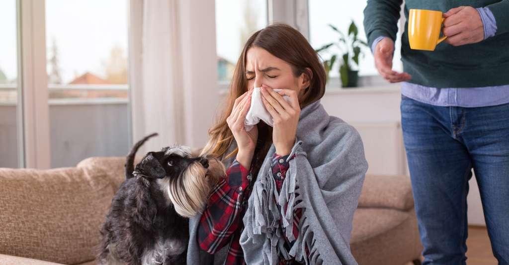 Les chiens ne semblent pas avoir conscience de ce qu'est la maladie. Ils ne font que réagir aux changements qu'ils sont capables de détecter en nous. Et le plus surprenant, c'est peut-être qu'ils éprouvent alors le besoin de partager avec nous ce qu'ils ressentent. © Budimir Jevtic, Fotolia