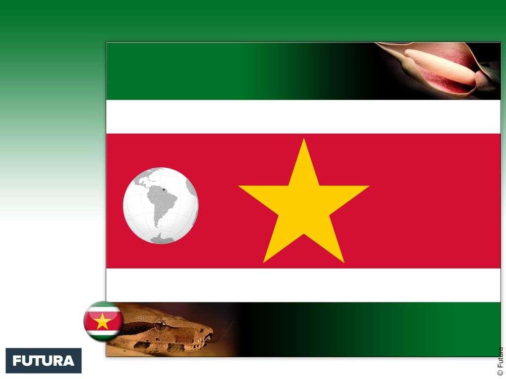 Drapeau : Suriname