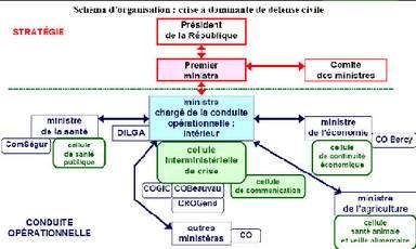 Plan gouvernemental français de prévention et de lutte « Pandémie grippale ». © Assemblée nationale
