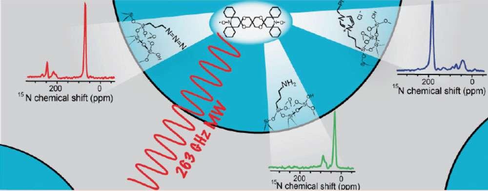 De nouveaux horizons pour l'étude des matériaux. L'introduction de la RMN de surface exaltée par polarisation nucléaire dynamique (PND) a récemment permis l'étude de matériaux comprenant une très faible densité de sites actifs (comme c'est le cas pour de nombreux catalyseurs hétérogènes), rendant leur étude par RMN classique impossible. L'étude de ces matériaux par RMN PND a aussi permis d'améliorer la technique en elle-même, en permettant la découverte de nouveaux solvants compatibles avec cette méthode, ainsi que de sources de polarisation plus efficaces. La PND permet, dans les meilleurs cas, d'accélérer les expériences RMN d'un facteur 12.000. Ainsi, des chercheurs lyonnais ont montré qu'il était possible d'obtenir en quelques heures des spectres de corrélation bidimensionnels, ou des spectres de noyaux peu abondants (comme l'azote 15), impensables sans PND. © L'Actualité chimique