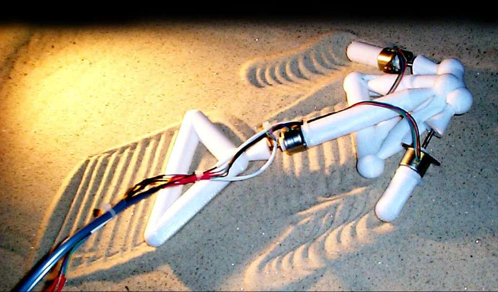 Un robot du projet Golem. Sa solution pour avancer sur le sable est originale mais efficace. © The Golem Project