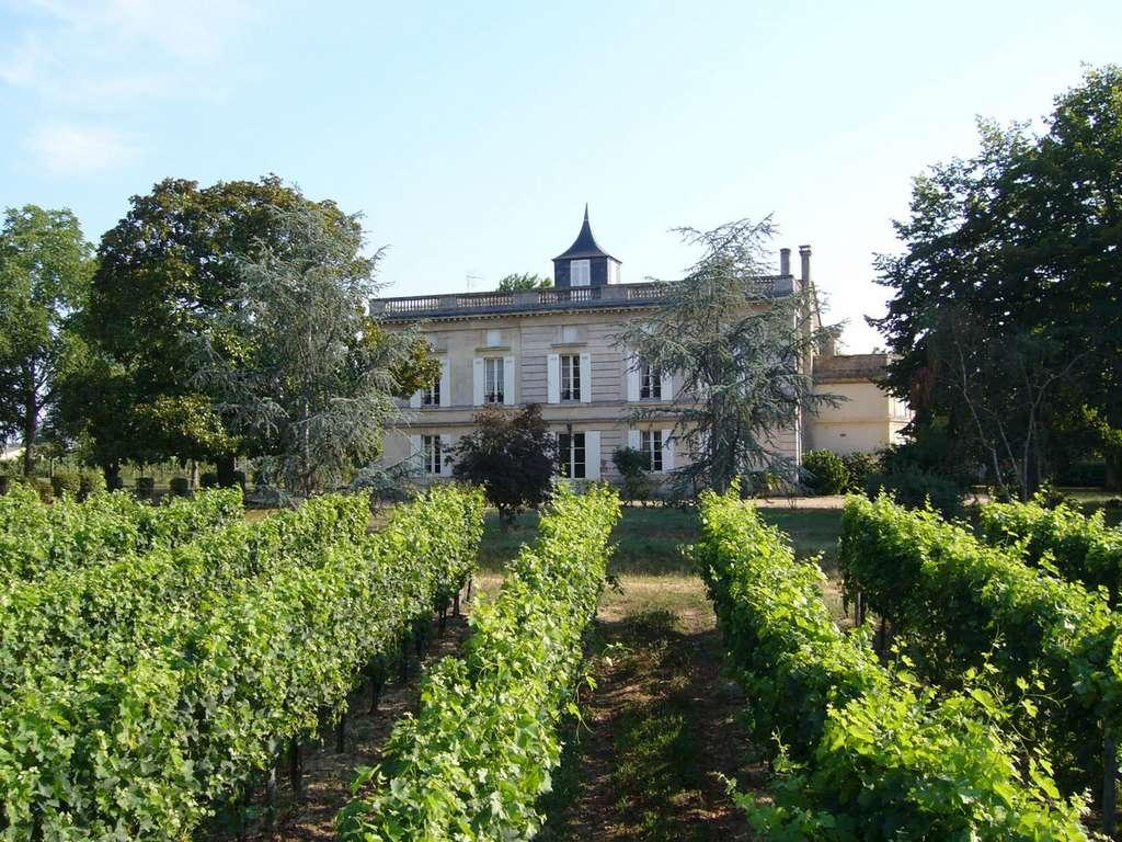 Château Laville à Saint-Sulpice et Cameyrac (Gironde), domaine du Bordelais. Inrap. © Château Laville