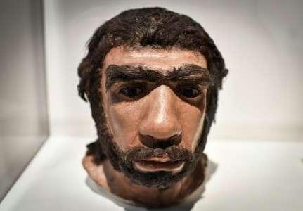 Un homme de Neandertal, pièce exposée en mars 2018 au musée de l'Homme de Paris. © Stephane de Sakutin, AFP