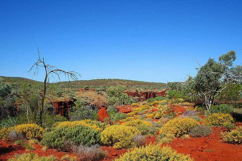 Les grains de quartz découverts par l'équipe anglo-française proviennent de la région de Pilbara, en Australie occidentale. Cette région abrite le parc national de Karijini (ici en photo) qui est le deuxième plus grand parc de la partie occidentale du pays. © Bäras, GNU 1.2