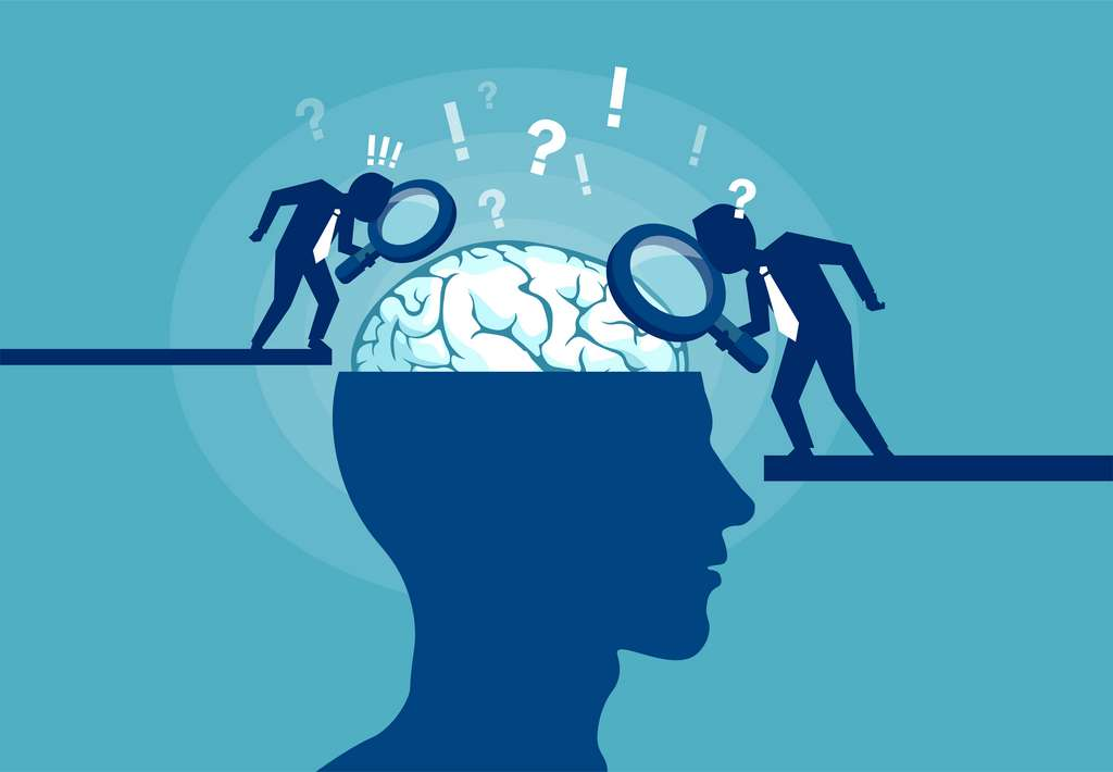 Le cognitivisme est un paradigme où la pensée s'apparente à un système de traitement de l'information. © Feodora, Adobe Stock