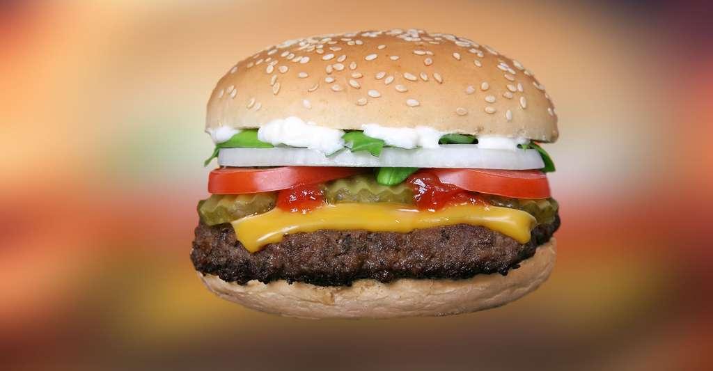 Le burger que l'on mange avec les mains. © Meditations, Pixabay, DP