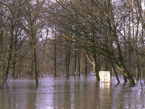 Inondation de la forêt alluviale de Chadieu en 2003 © CEPA-SE Reproduction interdite sans autorisation de l'auteur