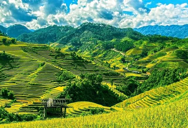 Rizières en terrasses. © PhotoPublicDomaine, Pixabay, DP