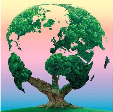 Face aux incertitudes sur les effets des OGM, le principe de précaution, au départ dédié à l'environnement, est appliqué. © DR