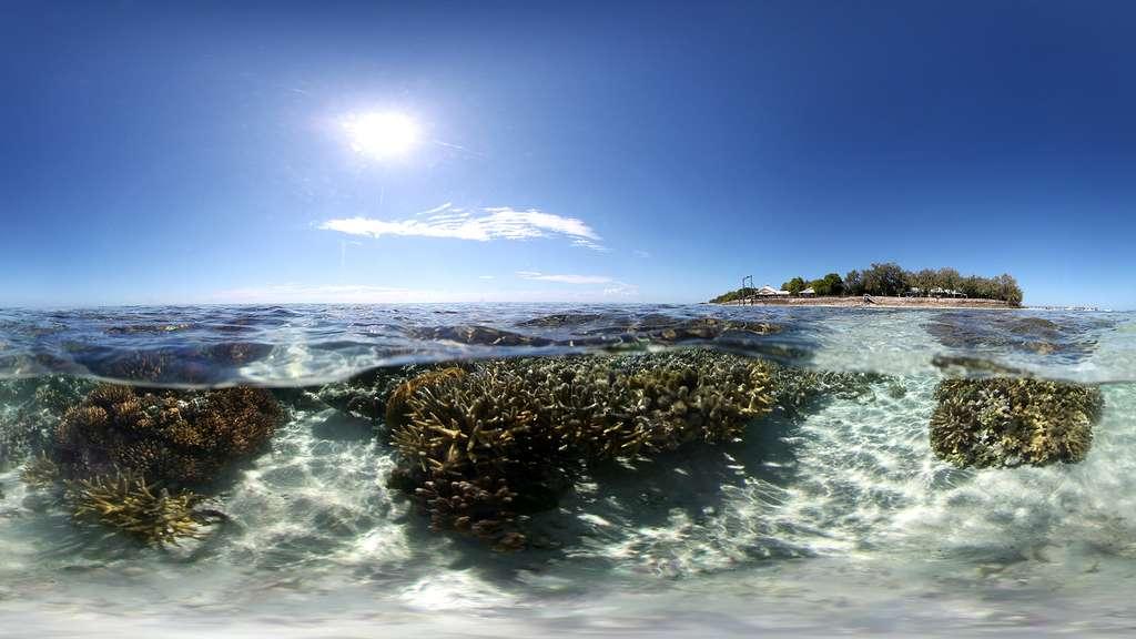 L'île Heron, au cœur de la Grande Barrière de corail
