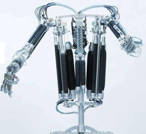 Le torse humanoïde de la société Festo illustre l'utilisation de muscles artificiels pour l'actionnement de mécanismes complexes. © Courtesy of Fest