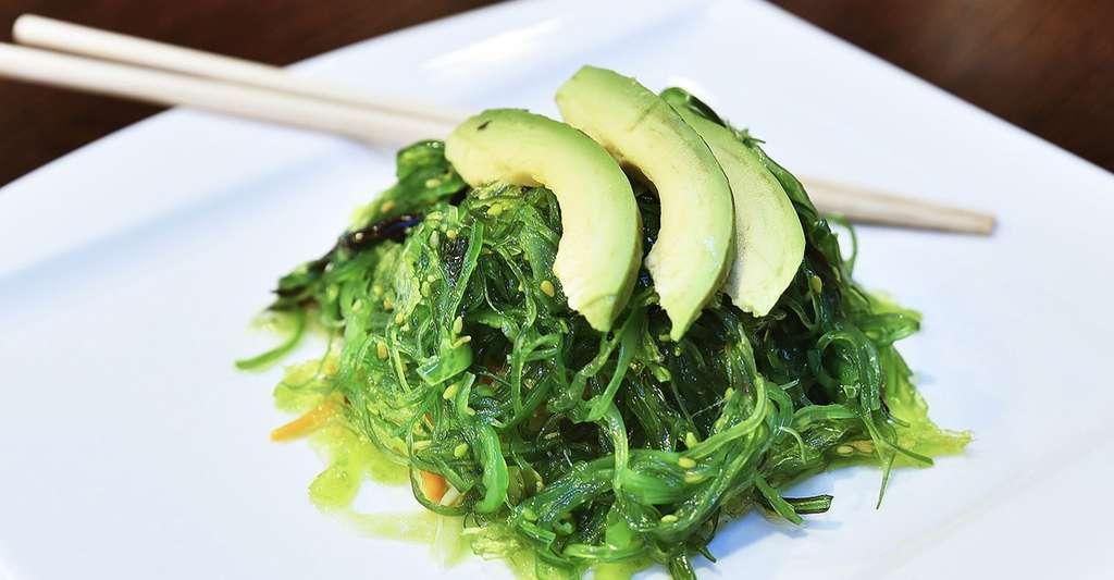Avocat servi sur une salade d'algues. © Zuzyusa, Pixabay, DP