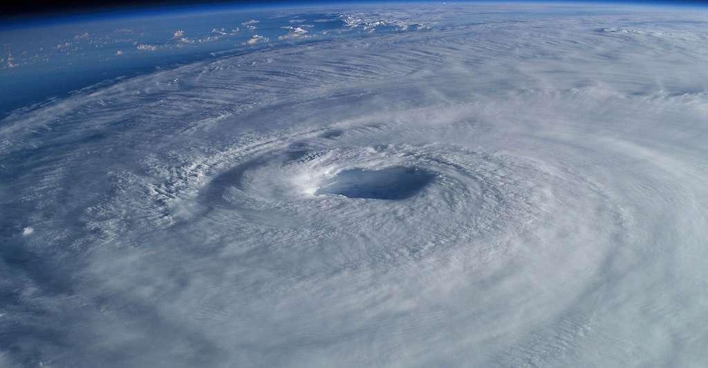 L'étude des planètes extrasolaires est une clé pour comprendre la formation planétaire. Des comparaisons peuvent être faites. Ainsi, des tourbillons à grande échelle se forment très souvent dans l'atmosphère terrestre (ici, le cyclone Elena au-dessus du golfe du Mexique) ; et, dans l'atmosphère des planètes géantes, des tourbillons peuvent perdurer très longtemps : la Grande Tache rouge découverte par Jean-Dominique Cassini à la surface de Jupiter est connue depuis plus de 300 ans. © WikiImages, Pixabay, DP