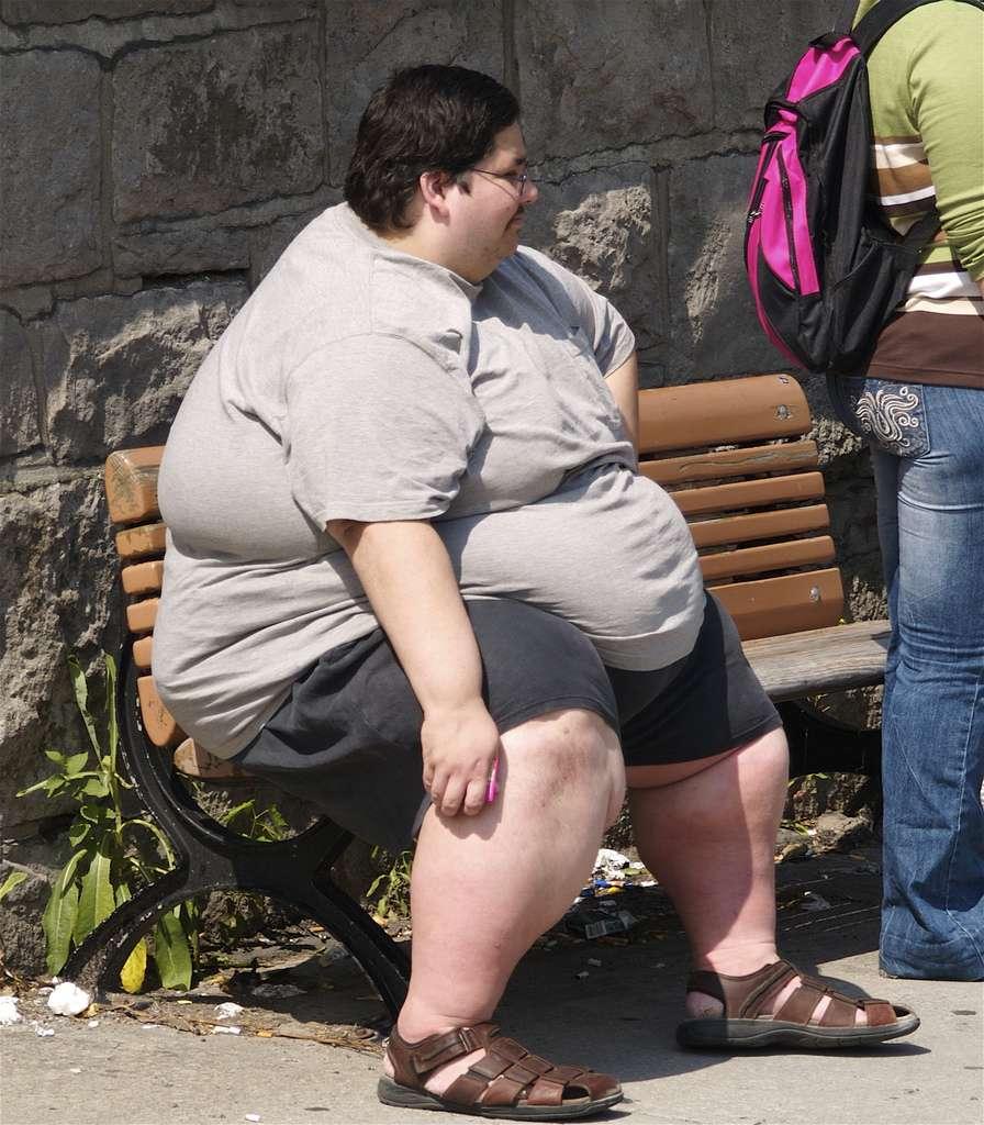 L'obésité s'accompagne d'autres troubles de la santé, comme le diabète de type 2 ou l'hypercholestérolémie. Le glycane LNFP III pourrait atténuer ces symptômes consécutifs au surpoids. © colros, Flickr, cc by 2.0