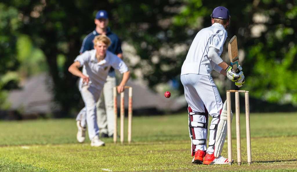 En hommage à Shane Warne, une légende explosive du cricket australien, la région volcanique a été baptisée Warnie Volcanic Province. © ChrisVanLennepPhoto, Fotolia