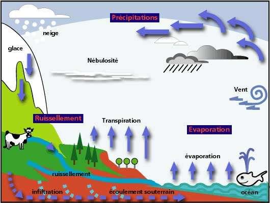Schéma simple du cycle de l'eau. © DR, reproduction et utilisation interdites