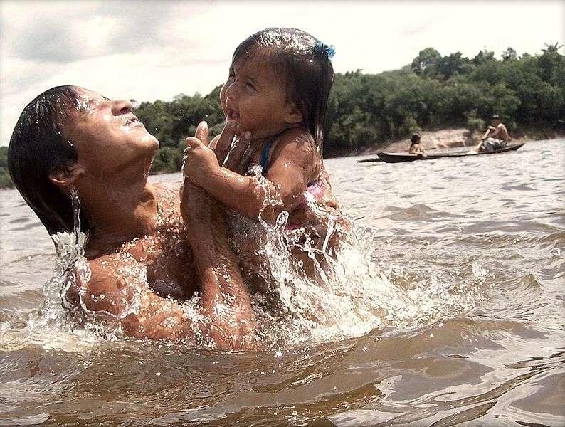 Depuis 20 ans que la communauté amazonienne d'Ilha de São Miguel, au Brésil, n'utilise plus certains filets de pêche, elle observe les plus fortes densités d'arapaima de la région. © Daniel Zanini H., Wikimedia Commons, cc by sa 2.0