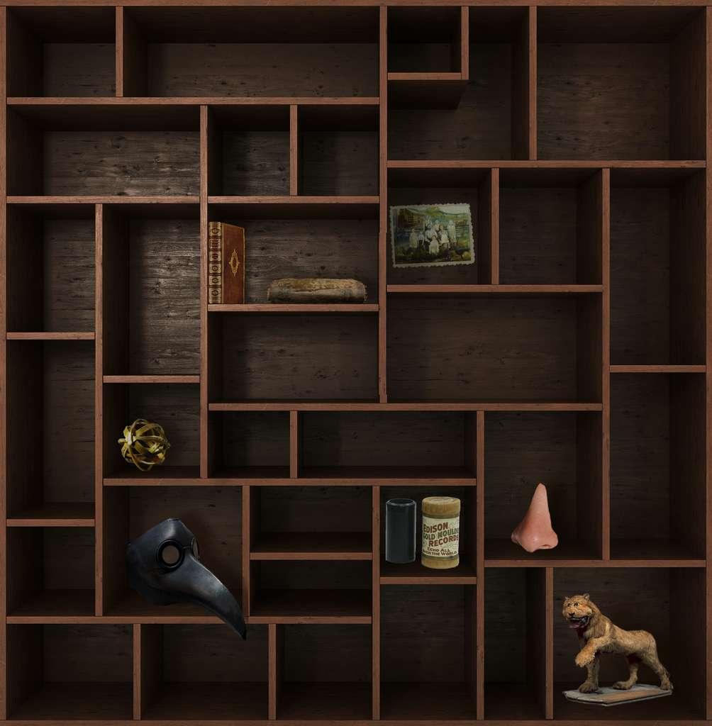 Et de sept ! Rendez-vous dans deux semaines pour un nouveau chapitre du Cabinet de curiosités. © nosorogua, Adobe Stock, Futura
